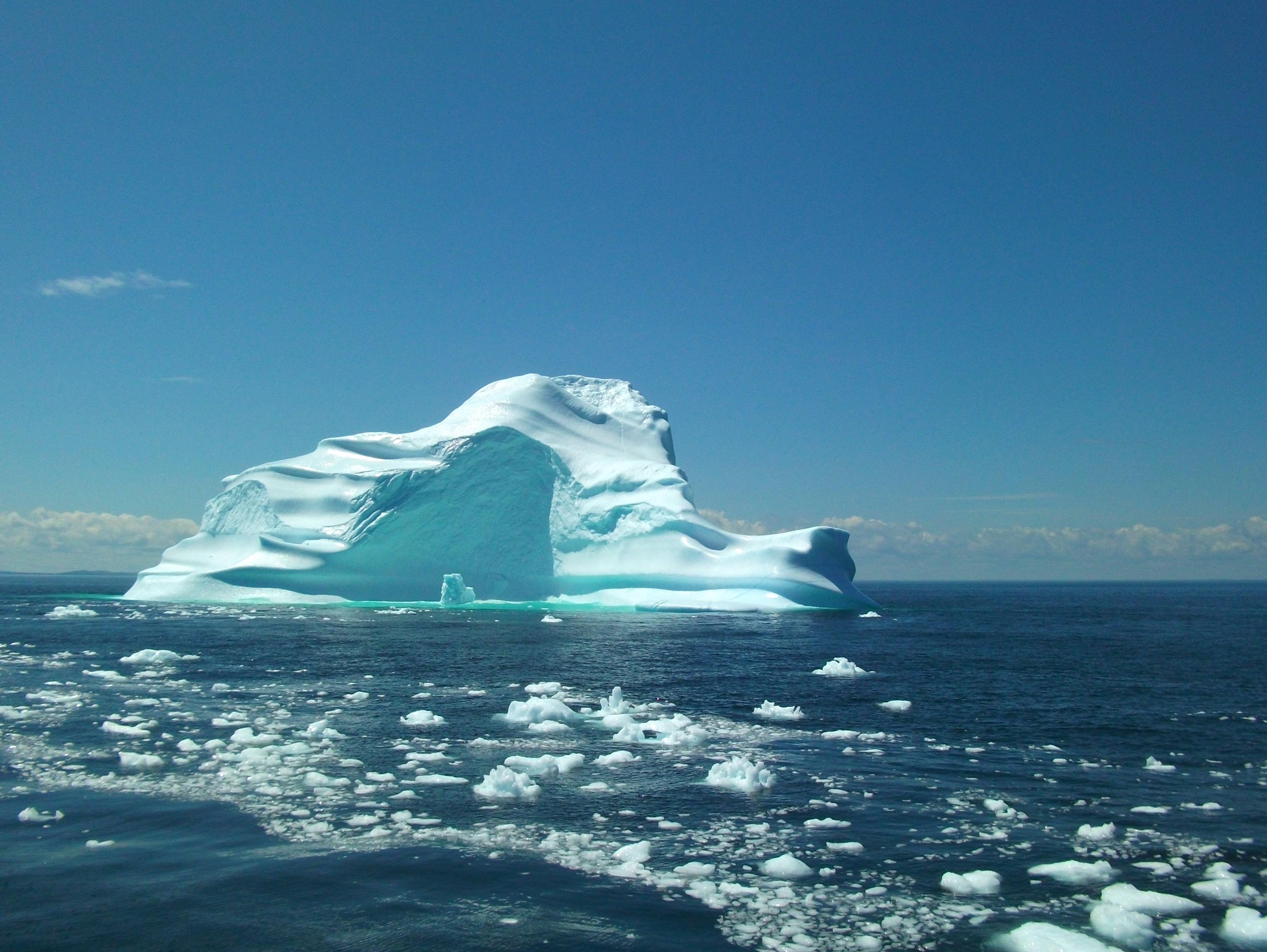 Derm's Boat Tours Iceberg